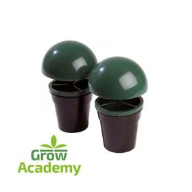 SLUG & SNAIL TRAPS (PACK OF 2)