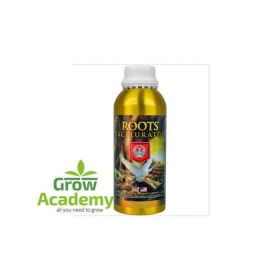 House & Garden Roots Excelurator 1lt