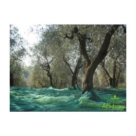 ΕΛΑΙΟΔΙΧΤΑ ΤΥΠΟΣ\OIL NET TYPE OLIVEGREEN (OLIVAGRO) 6X12 [M2]