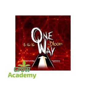 ONE WAY TO BLOOM 18-16-16