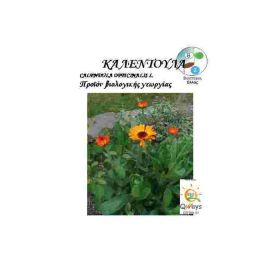 Καλεντουλα Calendula Officinalis