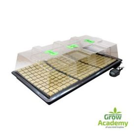 LARGE XSTREAM HEAT VARIABLE PROPAGATOR