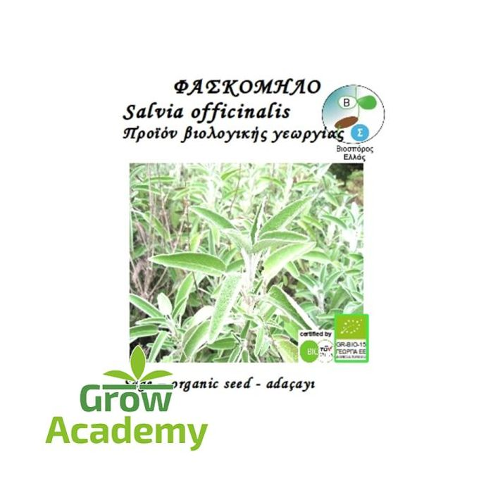 Φασκομηλο Salvia Officinale (1gr)
