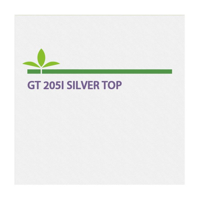 Gt 205I Silver Top