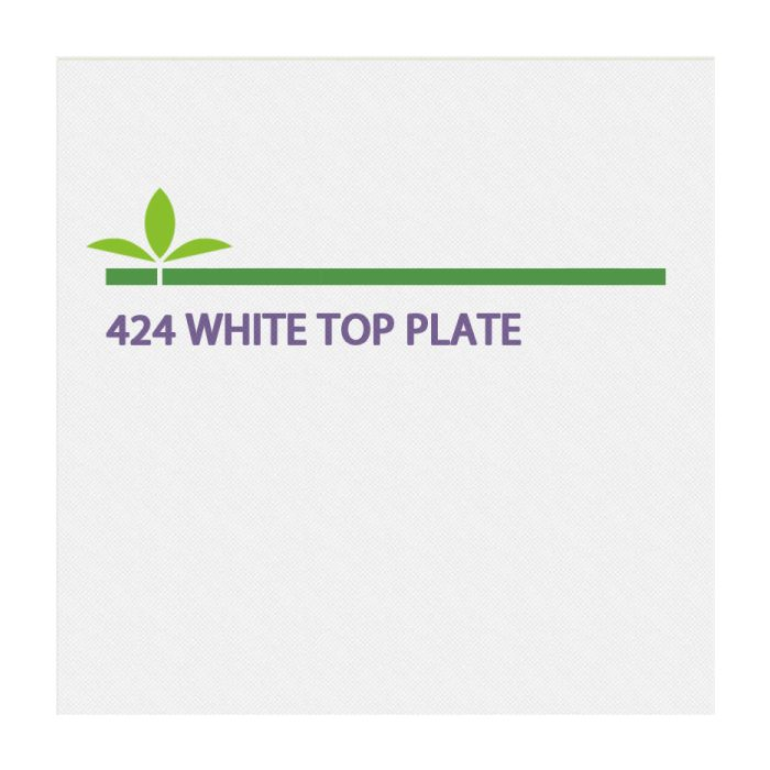 424 White Top-Plate
