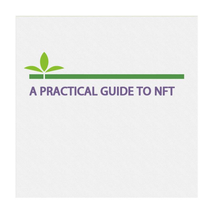 A Practical Guide To NFT